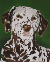 Jake - Dalmation  -  Sold