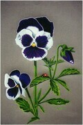 'Pansy and Friend'